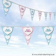 Gender Reveal Party Bunting - Plaid Design