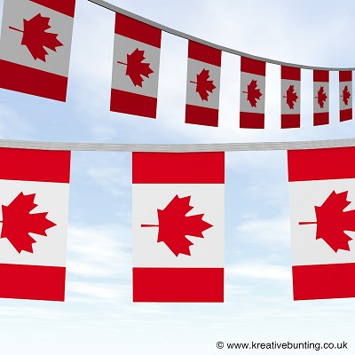 Canada Canadian bunting image