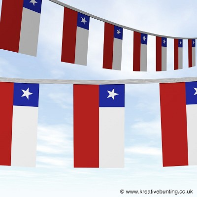 Chile bunting image
