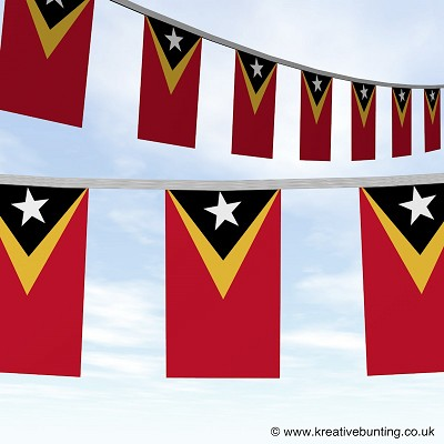 East Timor bunting