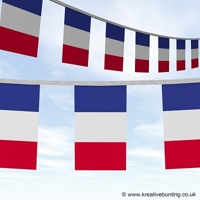 France French bunting image