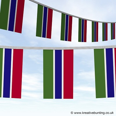 Gambier bunting image
