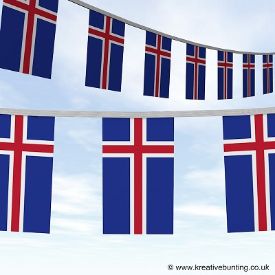 Iceland bunting