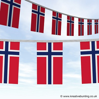 Norway bunting Image
