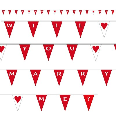 Will You Marry Me Bunting - Red & White